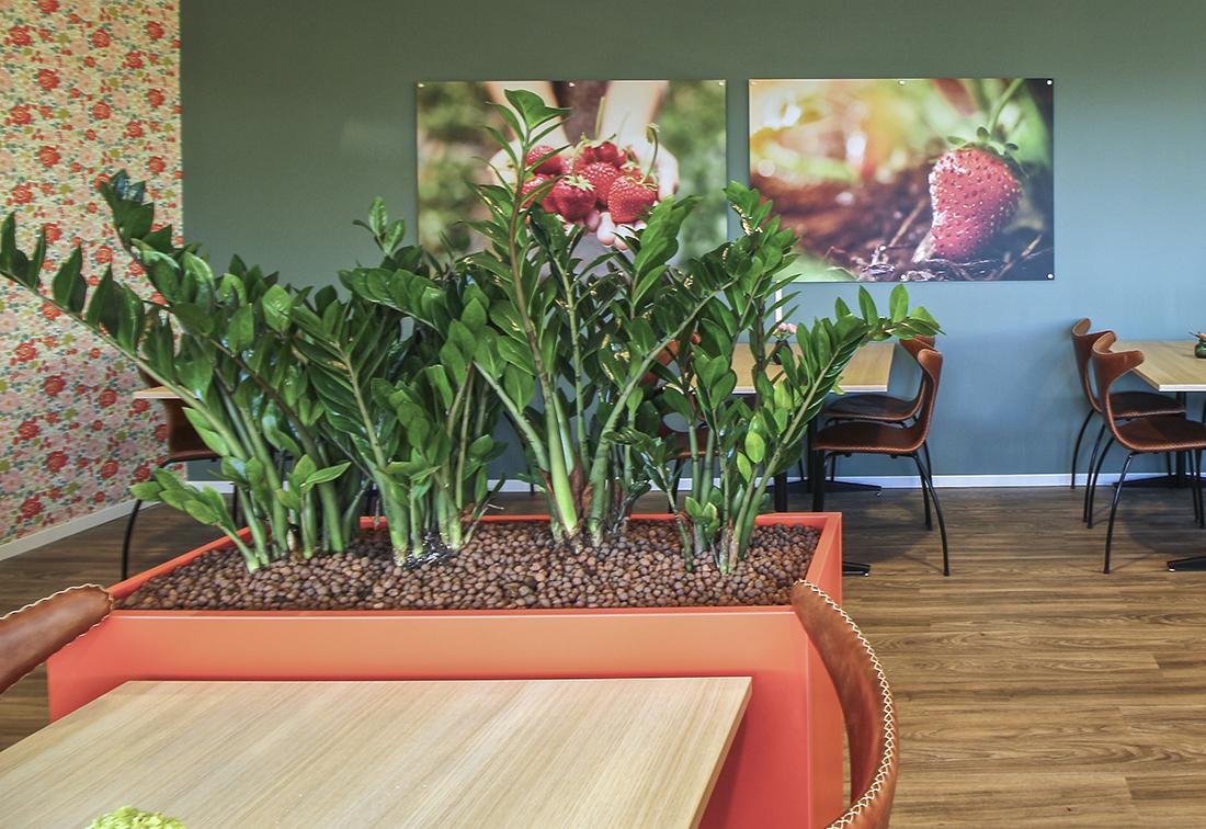 Blomsterkasser i laminat formica clementin og restaurantbord i lys eik.